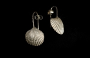 flat shell wire drop earrings